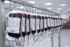 Blut wird knapp - Spenden sind gerade jetzt extrem wichtig - Aktion zum Weltblutspendetag 14.6. in Rostock